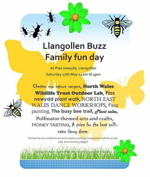 llangollen_buzz_event_27_May_2017